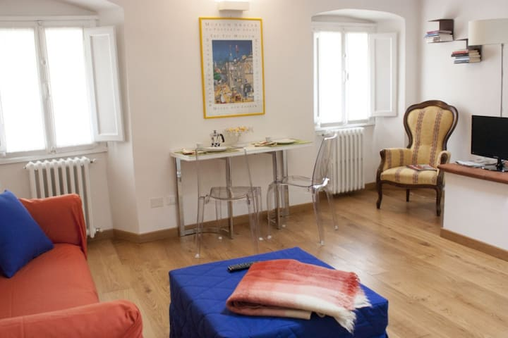 Apartment of 40 sq.m. central zone