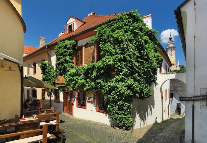 Castle View Apartments - Český Krumlov - Český Krumlov - House