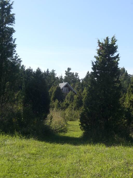 Blick vom Grundstück auf das Blockhaus