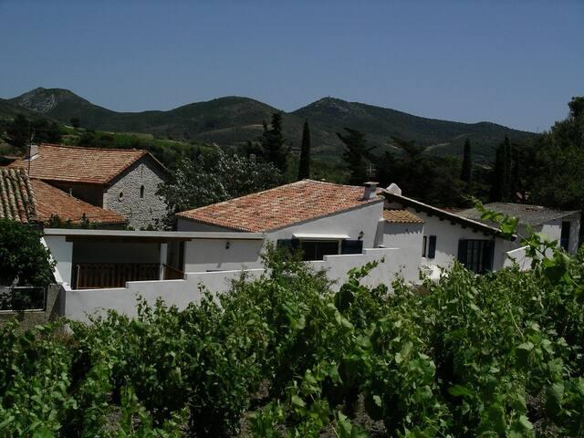 The pickers house - Cascastel-des-Corbières - Casa