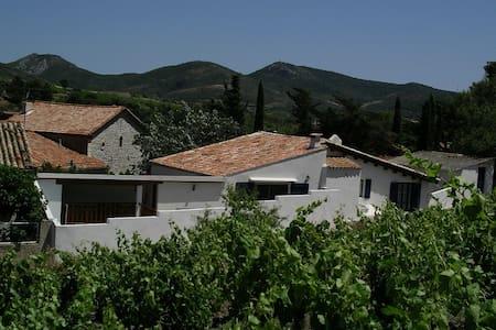 The pickers house - Cascastel-des-Corbières