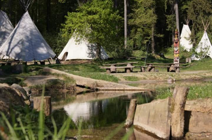 Tipi Camp in nature with many animals and bonfire