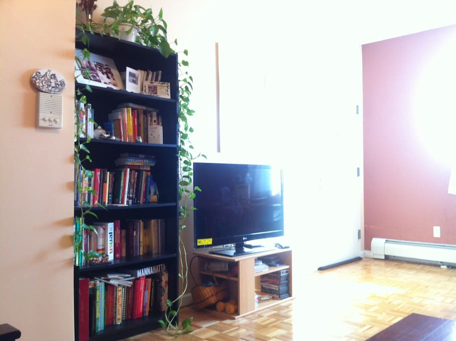 The living room - books, TV (programmed with Netflix), and lots of sun in the morning!