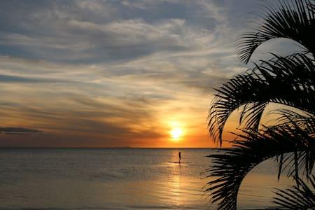 Vatia Beach Eco Resort - Dorm Bed - Bed & Breakfast