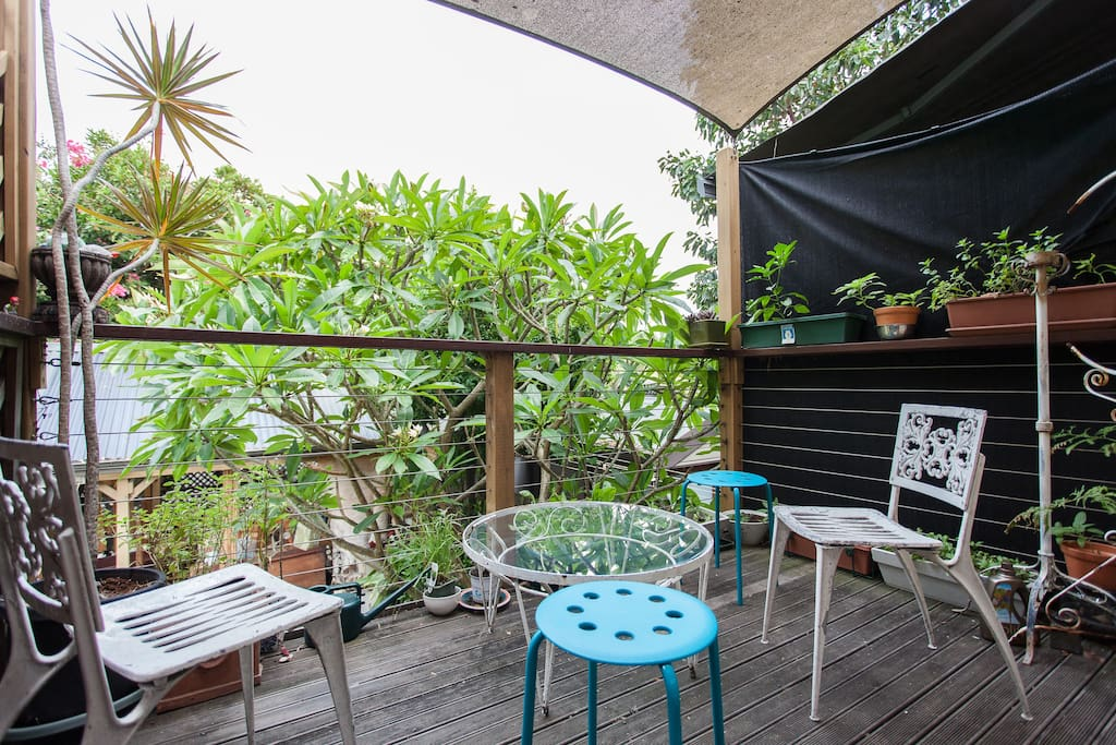 Sunny terrace off kitchen, leafy outlook and native birds nearby