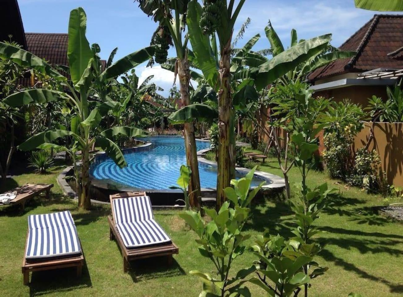 Giant shared pool with relaxing garden area with two joglo's and daybeds