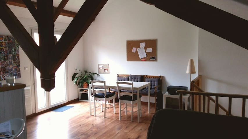 Grand appartement plein de charme! - Aguessac, Occitanie, FR - Lejlighed