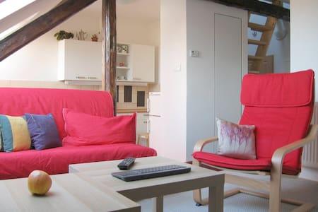 Spacious (70 m2) attic apartment 10min to downtown