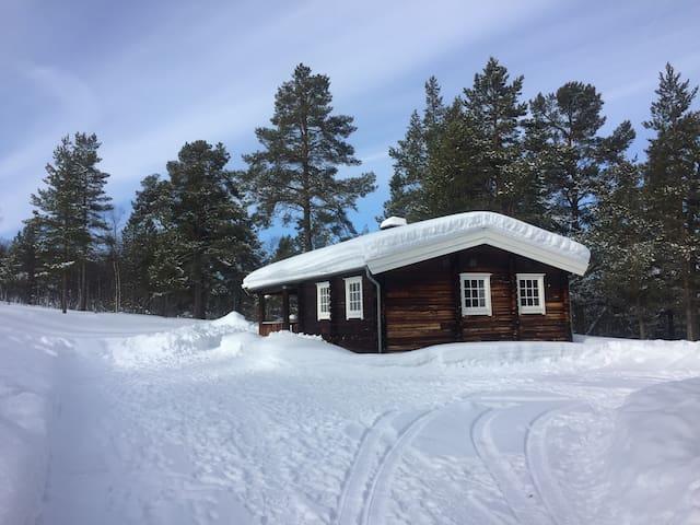 Koselig hytte Rylia Røros
