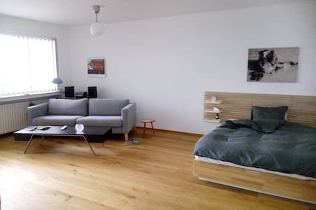 Top 20 Heerlen Vacation Rentals Homes Condo