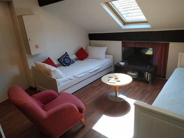 Villa St Joseph: cosy Studio with A/C Nice centre