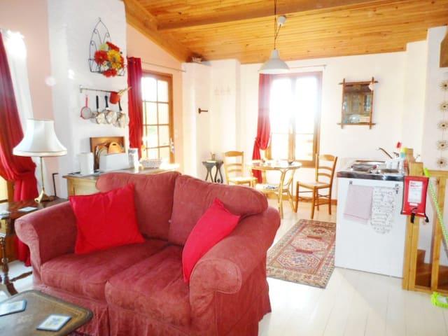 Idyllic country gite overlooking the river Garonne - Barie - Apartament