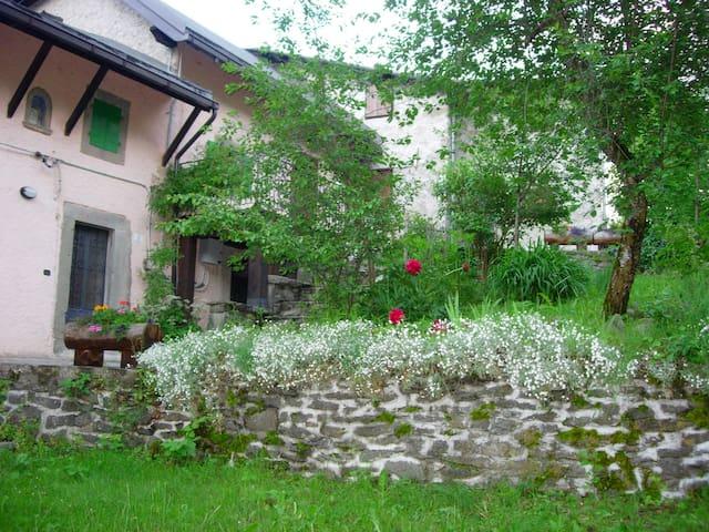 il tuo rifugio immerso nel verde - Faidello - House