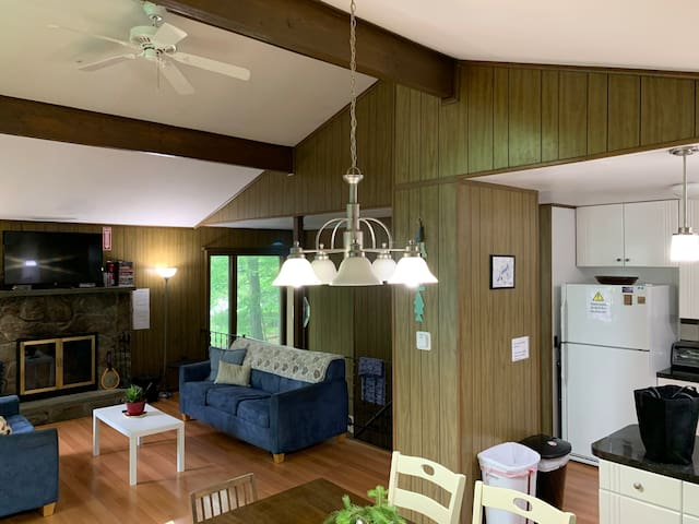 Big & Comfy Family Cabin / Ski Hill & Fireplace!