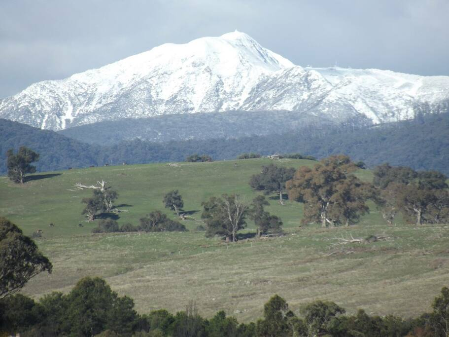 View of Mt Buller in Winter from our property