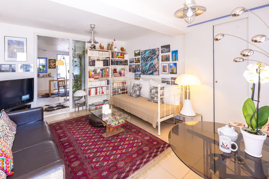 Salon comprenant 1 lit 1 place TV grand écran internet la fibre (+1 wc)
