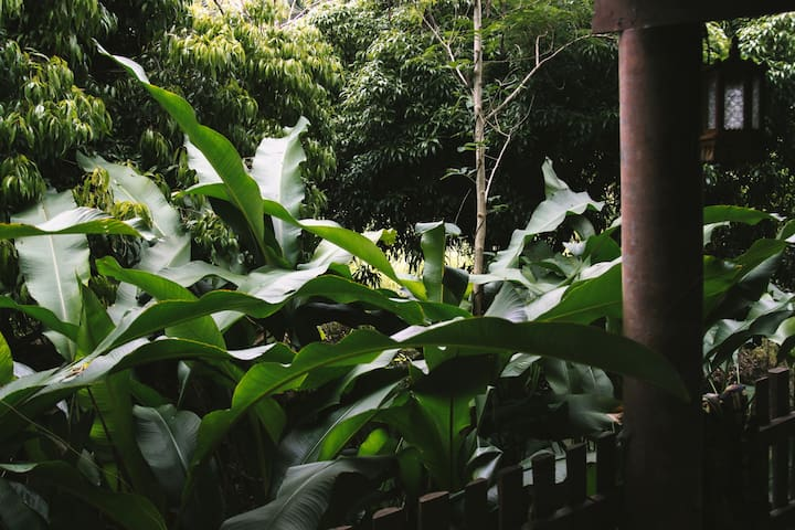 Real garden home in Amphawa (Golden Gardenia)
