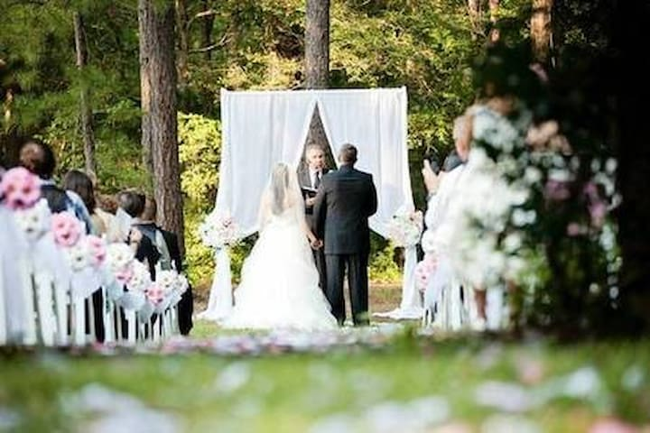 Romantic Forest Weddings  & Elopement Packages!