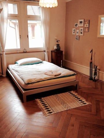 Big appartment near exhibition - Bazel - Appartement