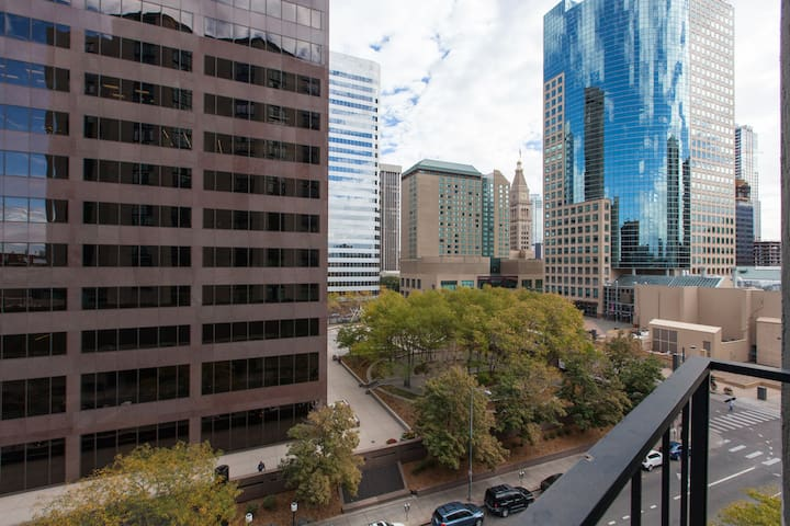 Upscale Downtown Guest Room near Union Station! - Denver - Apartment