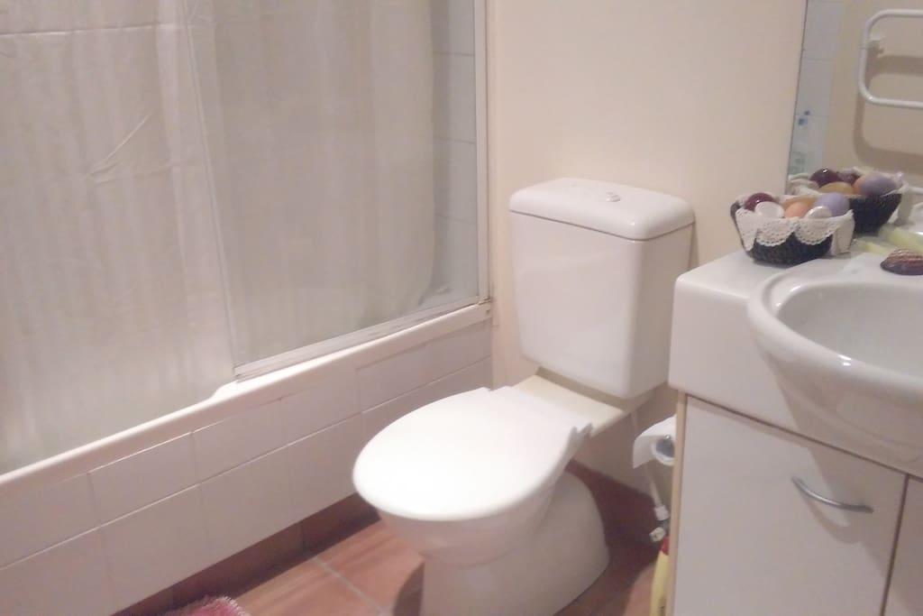Bathroom showing toilet,sink and shower curtain around bath.