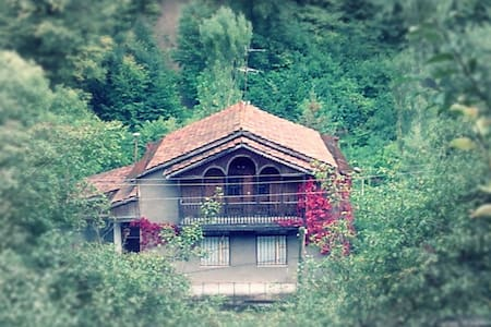 Experience unforgettable vacation - Dilijan
