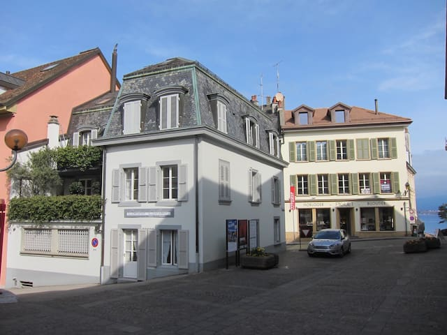 Beautiful 1-Bedroom Flat in Center of Nyon