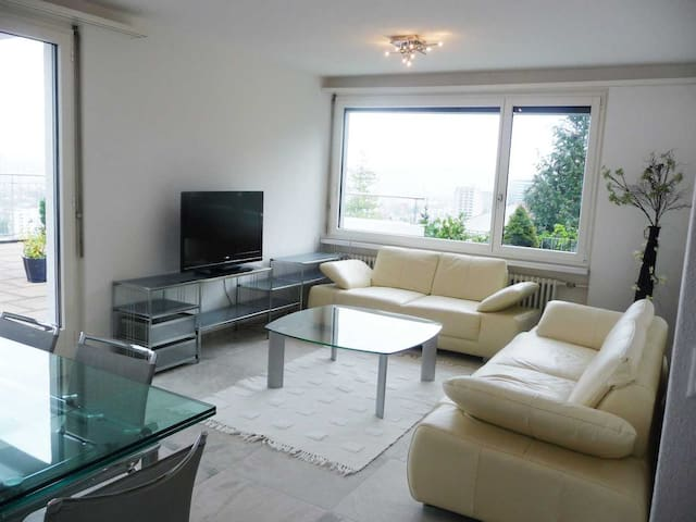 Top floor,big terrace,panoramic view, free parking - Zürich - Apartemen