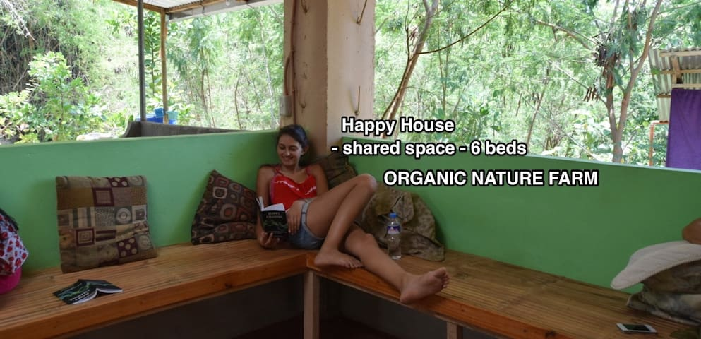 Organic Farmstay: Bed 1 of 6 - Happy House