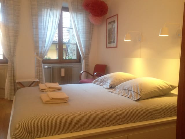 Nice room in the historical center of Colmar - Colmar - Apartamento