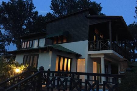 Monte Carlos