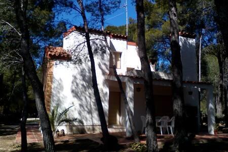 Chalet en Sant Jordi d'Alfama - L'Ametlla de Mar - กระท่อมบนภูเขา