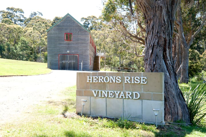 Herons Rise Vineyard  Accommodation- The Wine Loft - Kettering - Loft