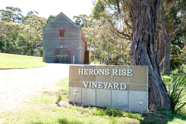 Herons Rise Vineyard  Accommodation- The Wine Loft