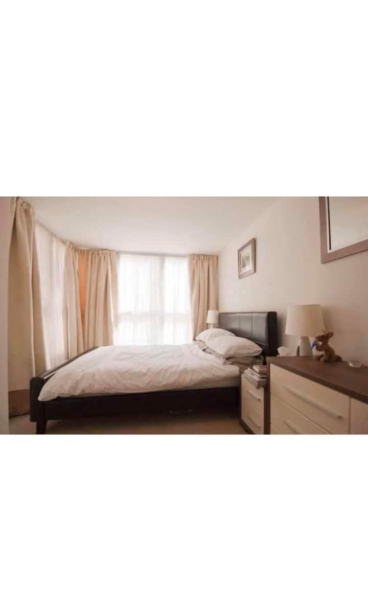 Bright en-suite double bedroom in Central London