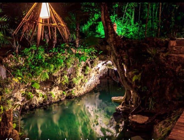 """""""La Cueva del Tapir y Cenote Maya"""