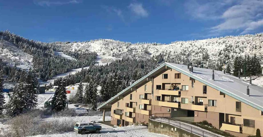 Sasquatch Ski In/Ski Out Mountain-Side Condo