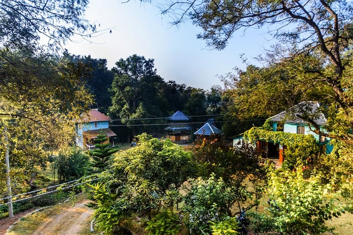 Raadballi Retreat-Experience unique jungle abode