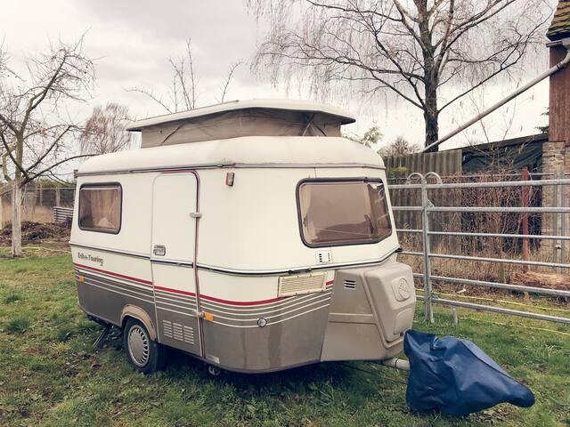 Cozy Camper Berlin Freelander Mobile Home