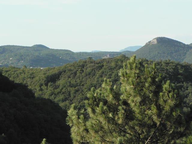 Unique et charmant avec une vue sur les Cévennes - Lasalle - Apartment
