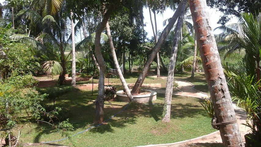 3 room villa with idyllic garden - Bentota - Casa