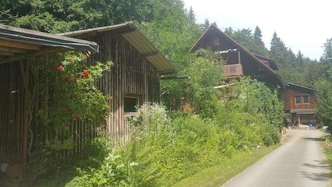 Hütte im Schwarzwald mit Wellness