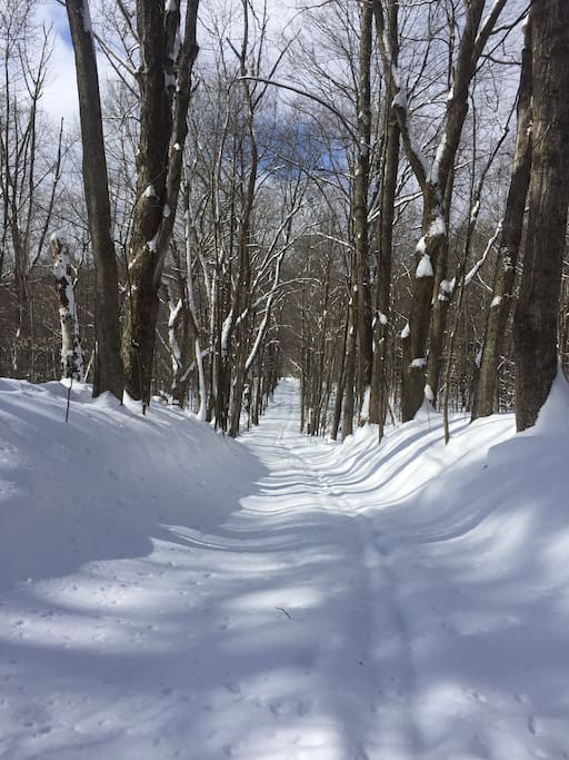 Borrow Tamarack snow shoes and explore the rural roads right out the back door, or drive 25 min to Prospect Mt. for cross country skiing on groomed trails.