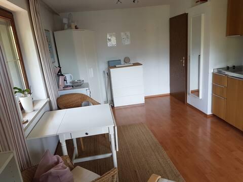 gemütliches Appartement mit Balkon
