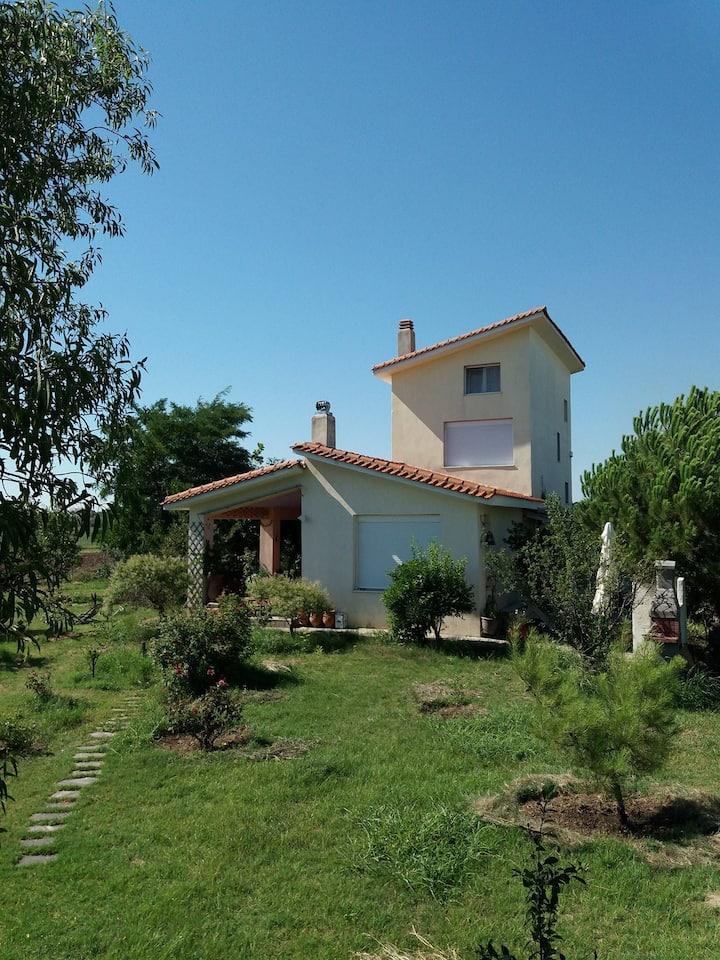 A paradise villa near the sea