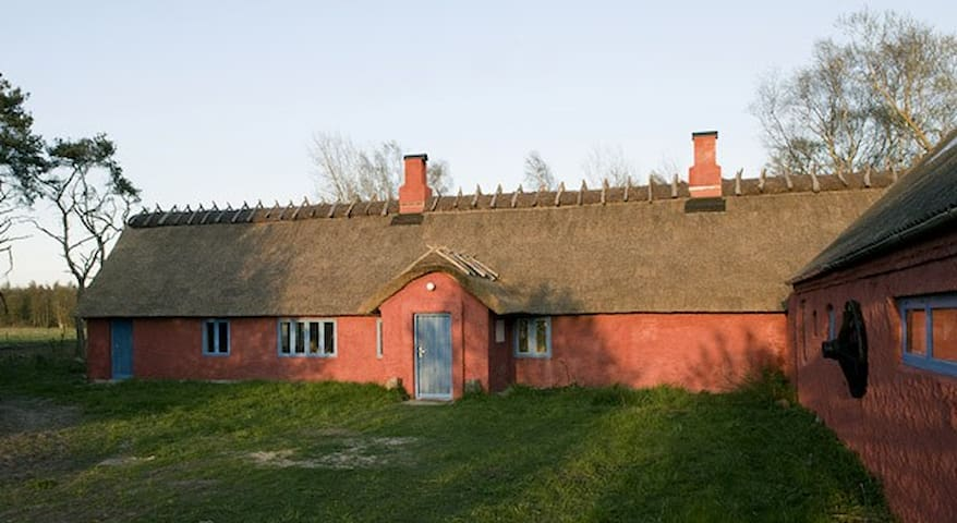 Asger Jorns hus udlejes af Linder/Christoffersen - Læsø - Talo