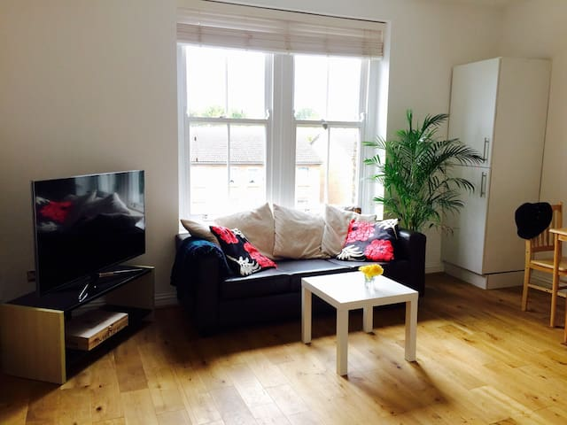 Sunny room, Hackney Downs, central, near station