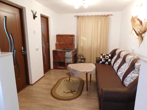 Your vacation home in Bucovina