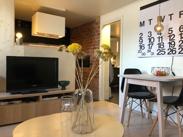 Nice, modern renovated basement flat.