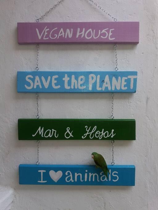 Casa vegana Mar & Hojas